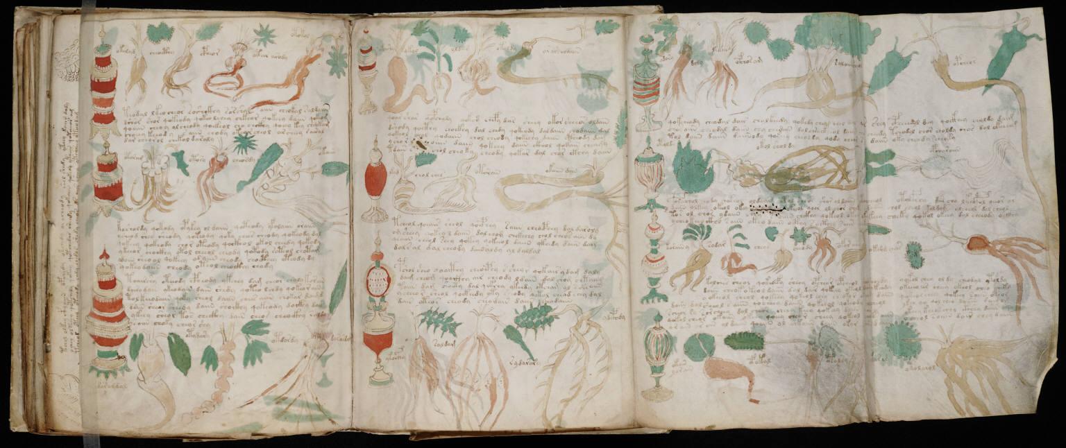 Voynich Manuscript Pdf File Voynich Manuscript 162