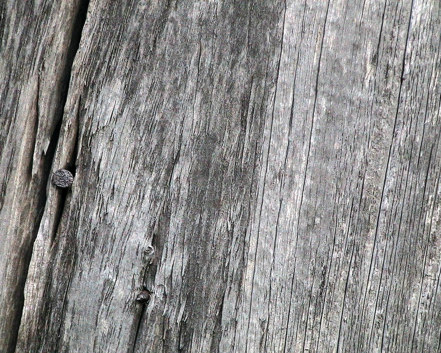 File:Weathered barn wood with nail - Wikimedia Commons