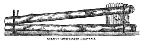 19th century knowledge traps and snares simple dead fall.jpg