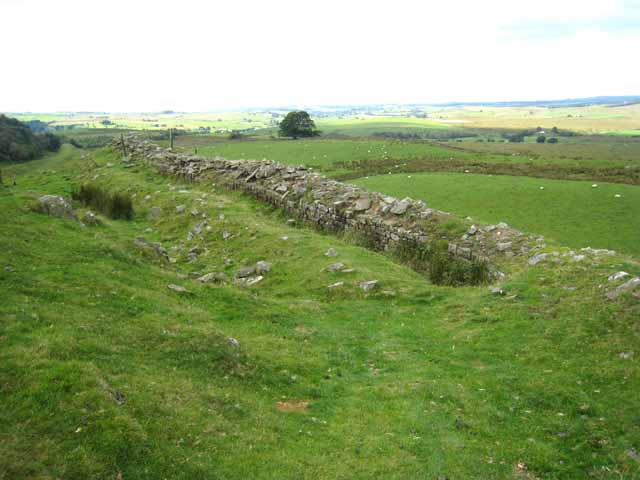 A fragment of Hadrian's Wall at Walltown - geograph.org.uk - 536651