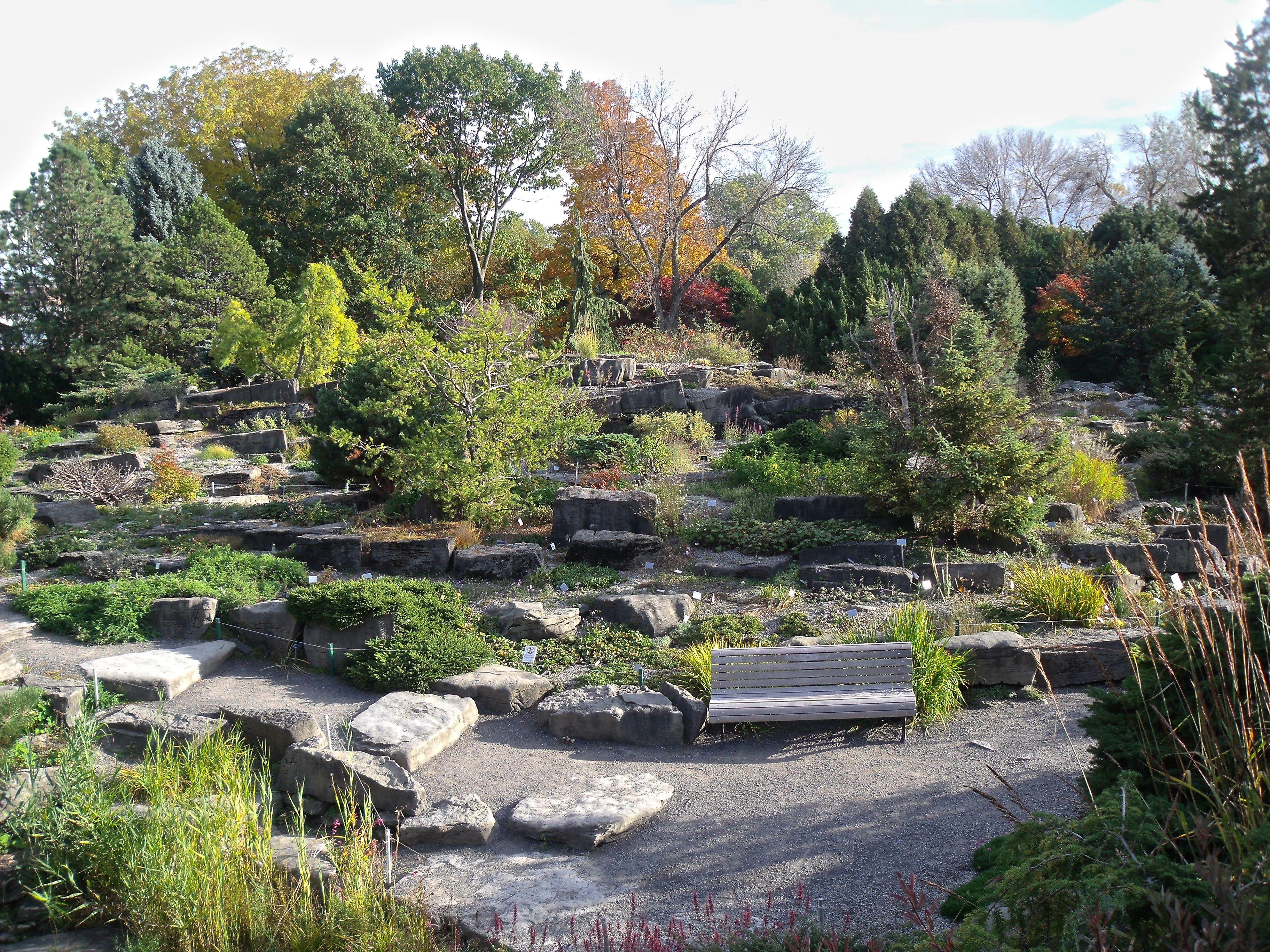 file alpine garden montreal botanical garden. Black Bedroom Furniture Sets. Home Design Ideas