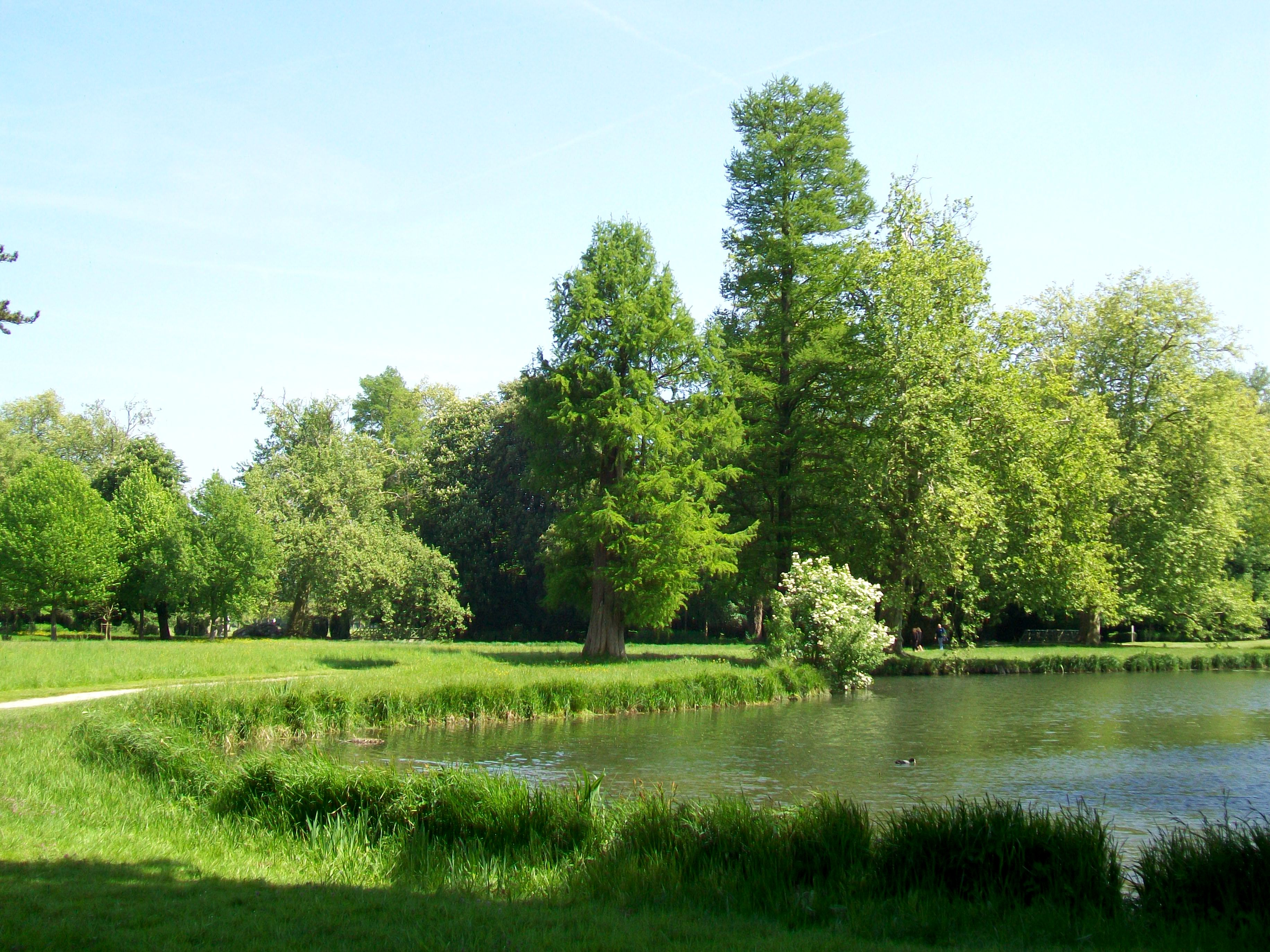 File ch teau de chantilly jardin anglais lac des cygnes for Jardin anglais