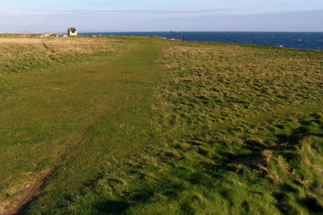 Coastal lawn, Broad Ope - geograph.org.uk - 1099806