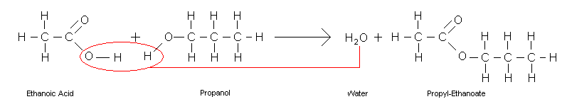 Organic Chemistry/Carboxylic acids - Wikibooks, open books for an