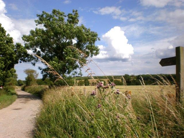 Footpath at Rudston - geograph.org.uk - 1408756