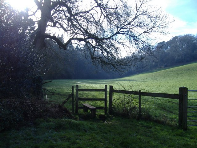 Footpath to West Tanpit Wood - geograph.org.uk - 329726