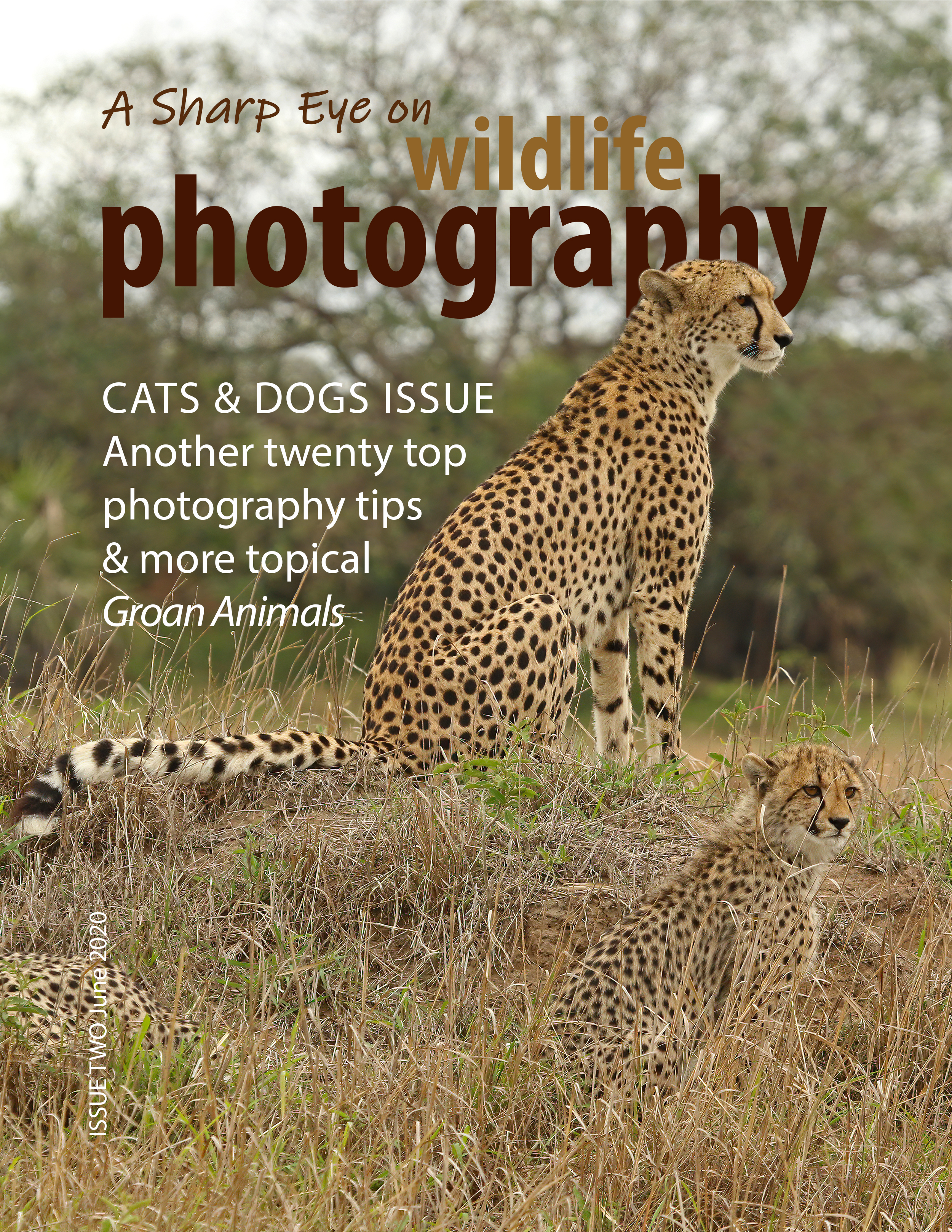 Front cover of A Sharp Eye on wildlife photography - Issue Two.jpg