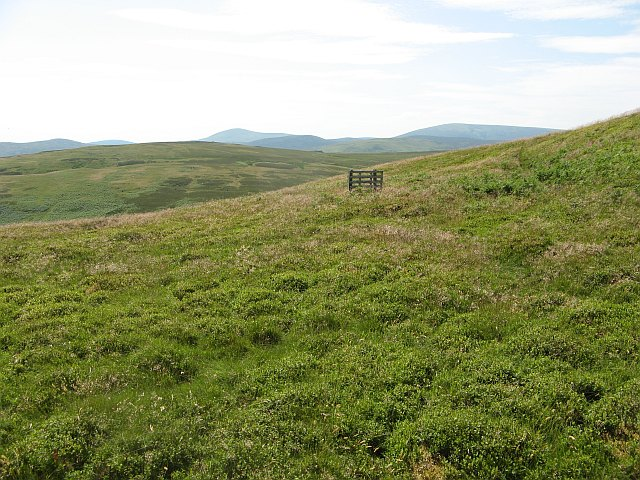 Grouse butt, Yeavering Bell - geograph.org.uk - 1386080