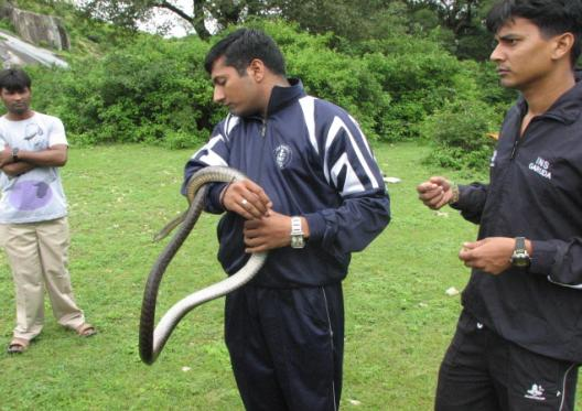 Snake Handled by Indian Navy Person