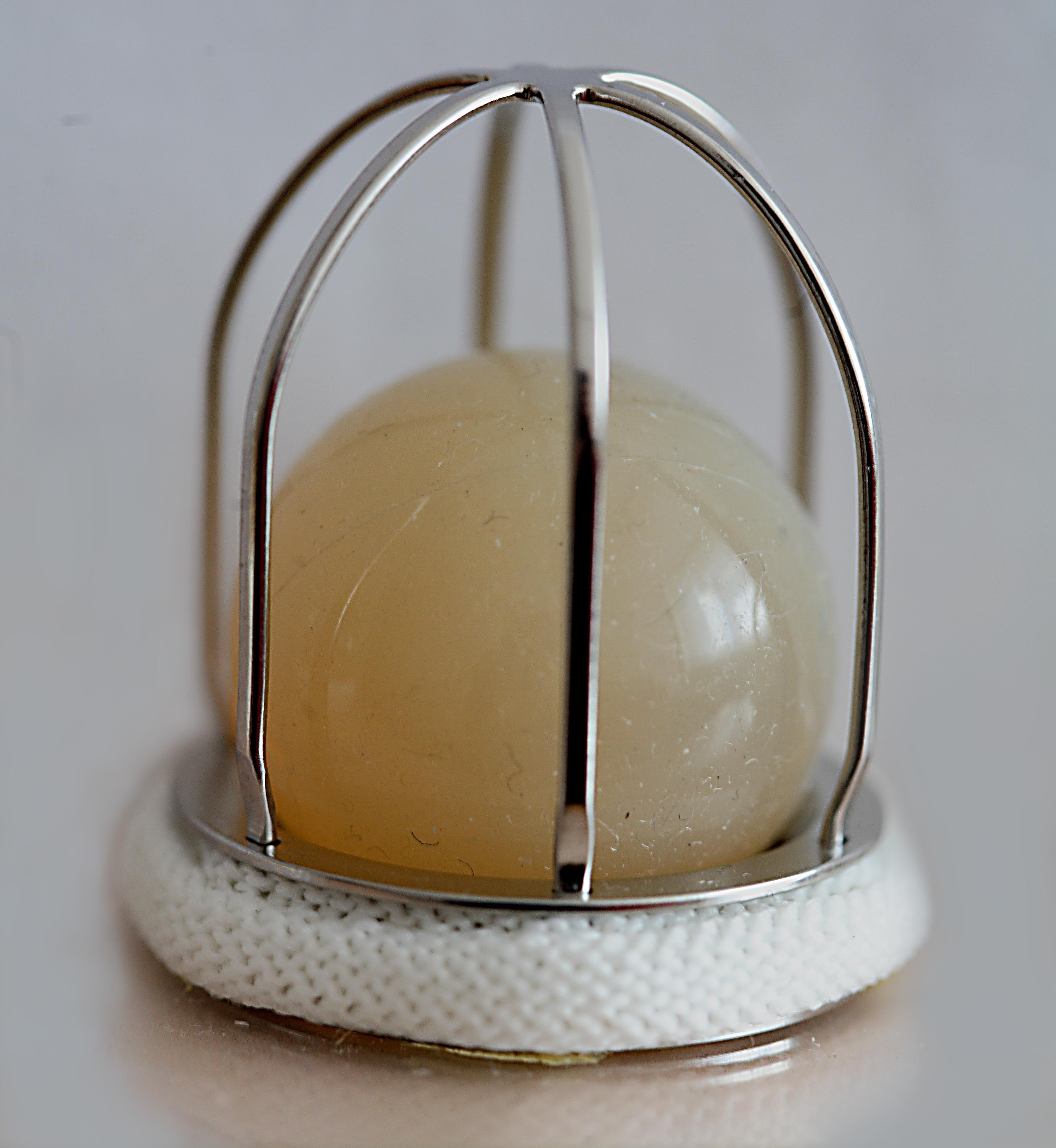 Файл:MKCH-01 artificial heart valve jpg — Википедия