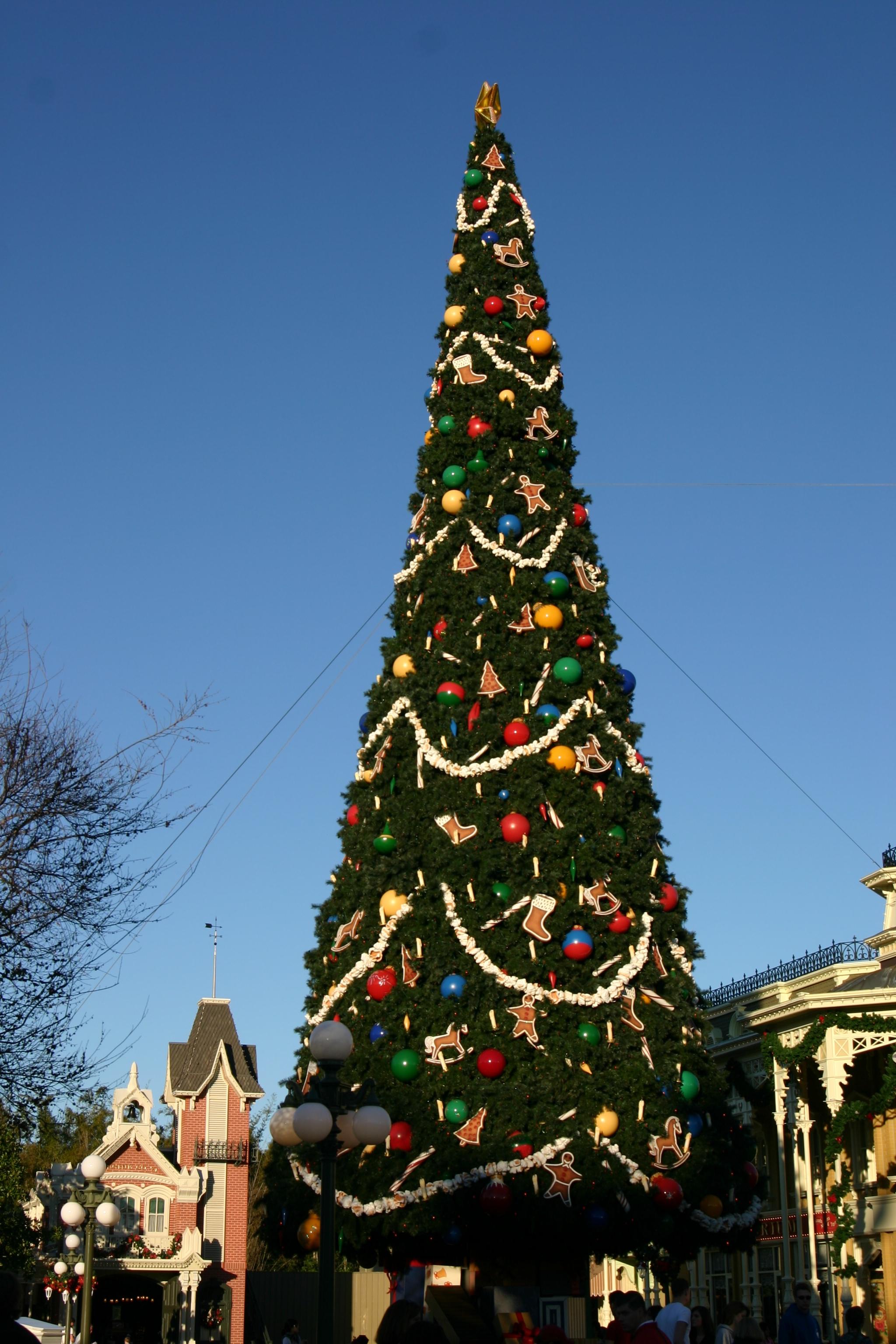 File Magic Kingdom Christmas Tree By Mike Miley Jpg Wikimedia Commons