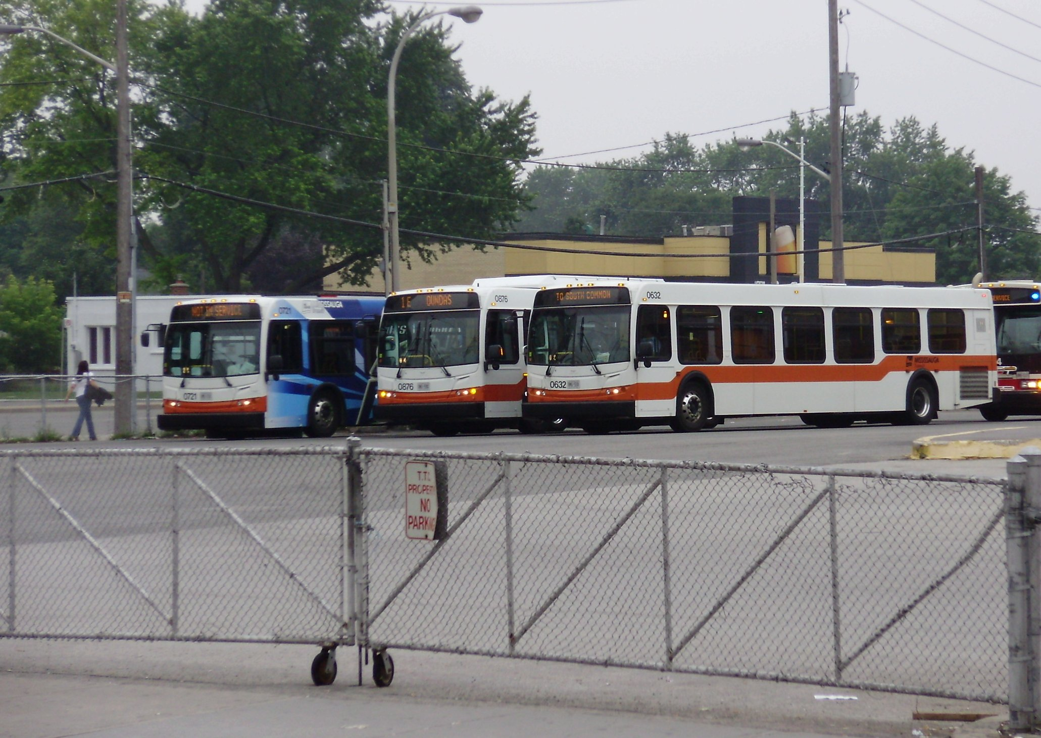 File:Mississauga Transit Buses at Islington.jpg - Wikipedia, the ...