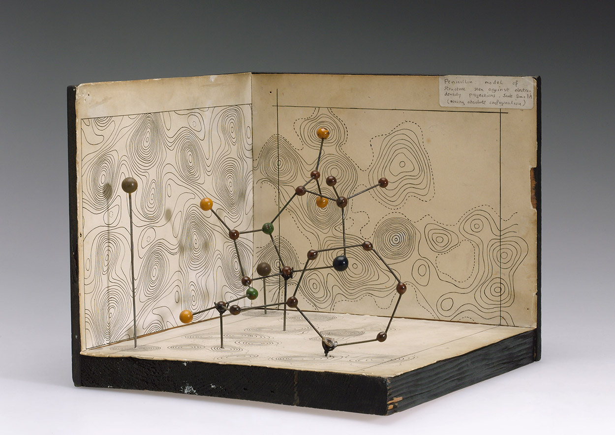 https://upload.wikimedia.org/wikipedia/commons/6/6e/Molecular_model_of_Penicillin_by_Dorothy_Hodgkin_%289663803982%29.jpg