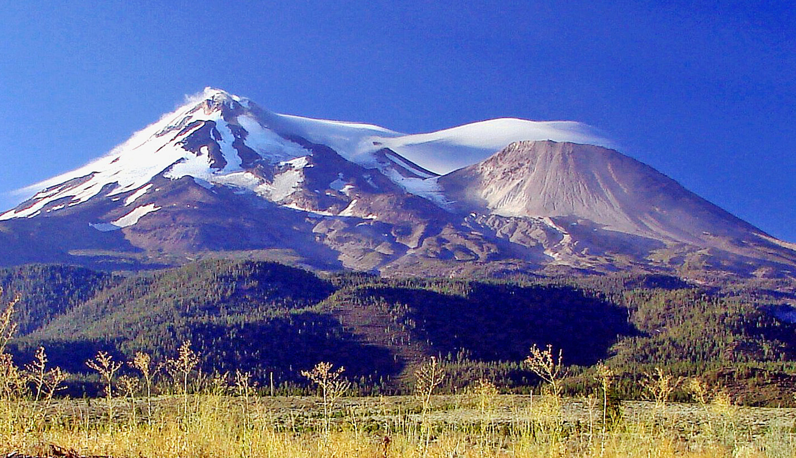mount shasta dating Local news for mount-shasta, ca continually updated from thousands of sources on the web.