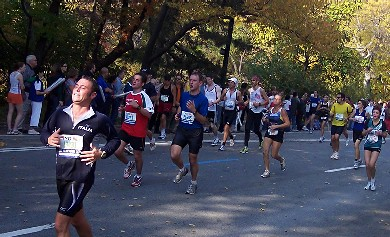 Läufer im Central Park beim New-York-City-Marathon 2005