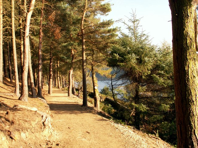 New path on the northern side of Langsett Reservoir - geograph.org.uk - 596713