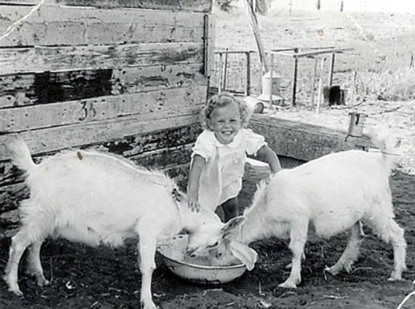 ילדה עם עיזים