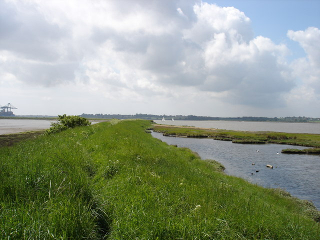 Salt marsh old and new - geograph.org.uk - 1312414