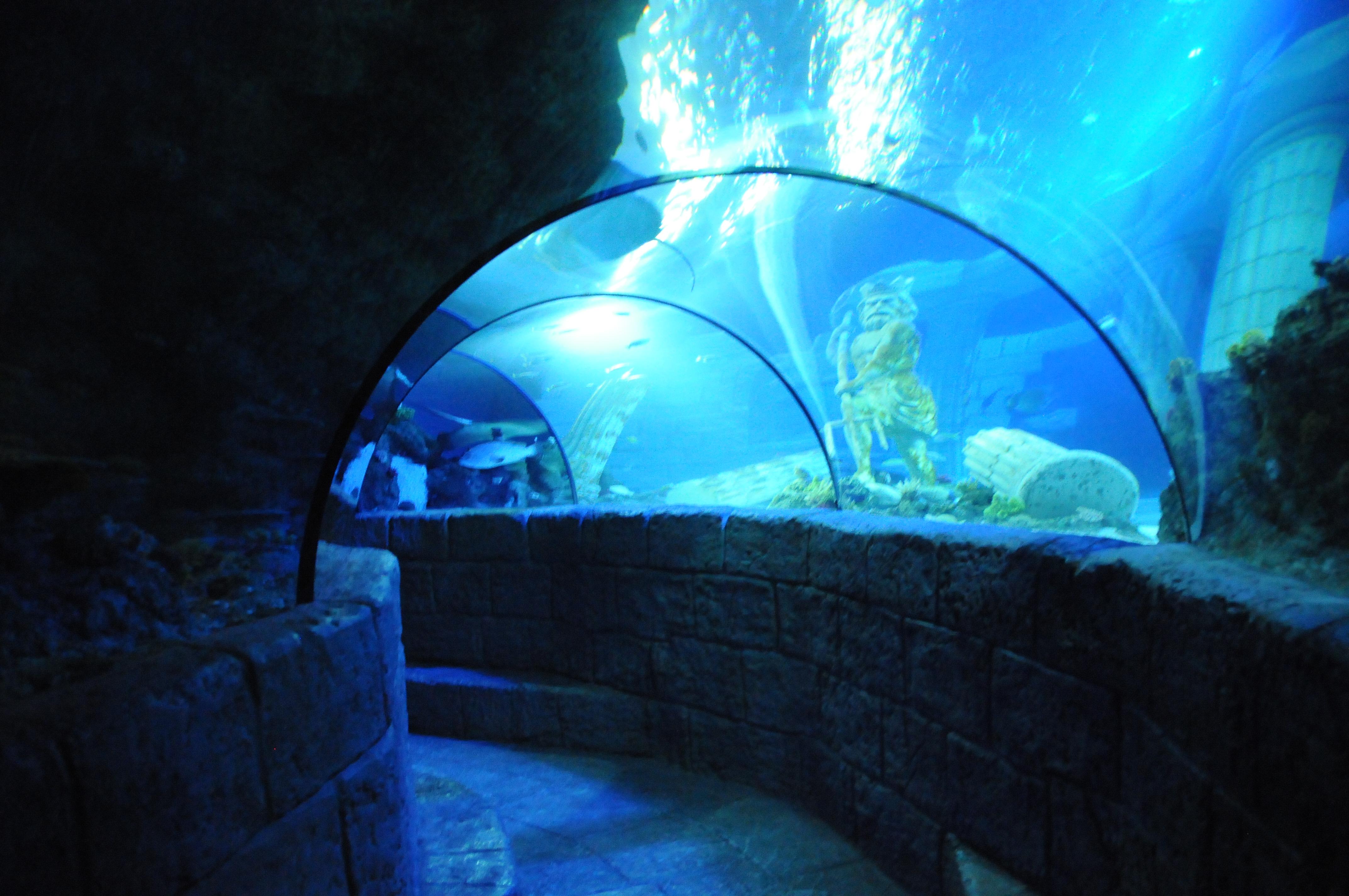 Image Result For Sea Aquarium
