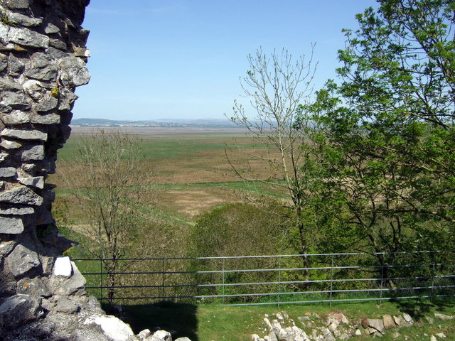 The salt marshes below Weobley castle - geograph.org.uk - 1311232