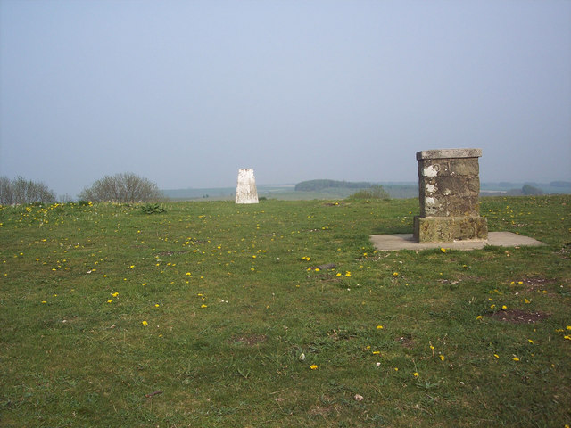 Trig pillar and topograph on Win Green - geograph.org.uk - 415175