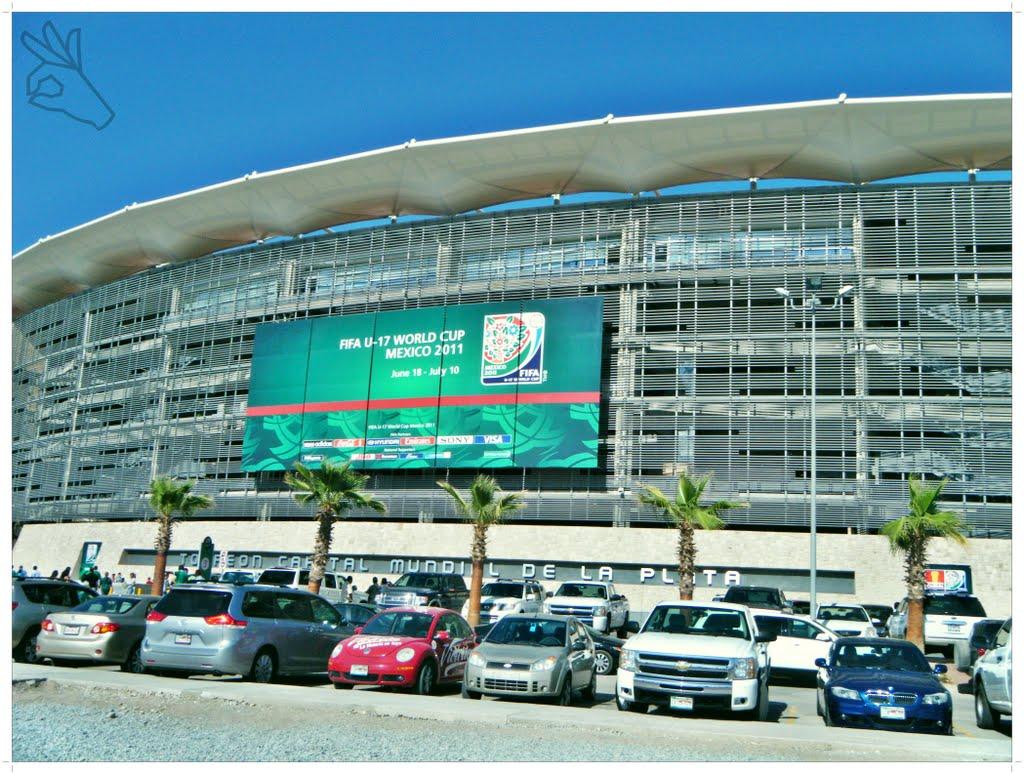 Torre n estadio corona 30 000 santos laguna mexique - Laguna piscine allemagne ...