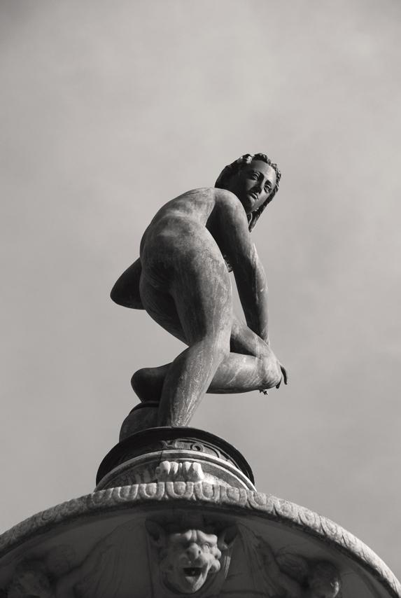 http://upload.wikimedia.org/wikipedia/commons/6/6e/Villa_La_Petraia_-_Fiorenza_Fountain_-_Venus_02.jpg