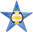 Volleyball Barnstar (International).png