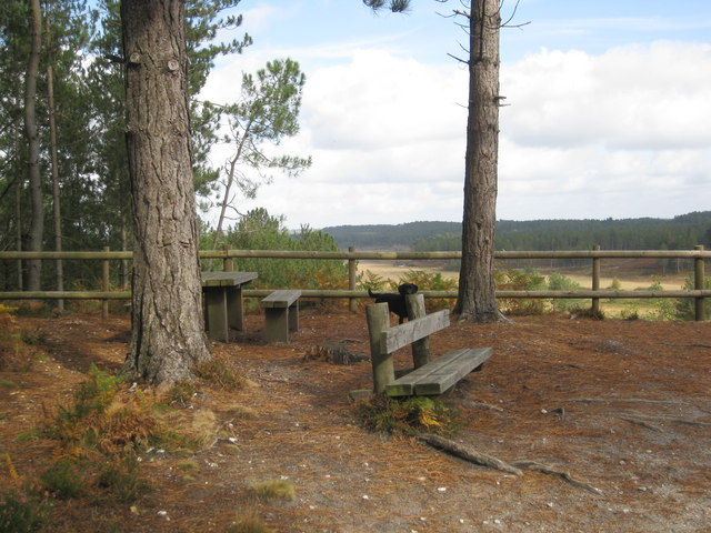 Wareham Forest Viewpoint - Looking N - geograph.org.uk - 1533667