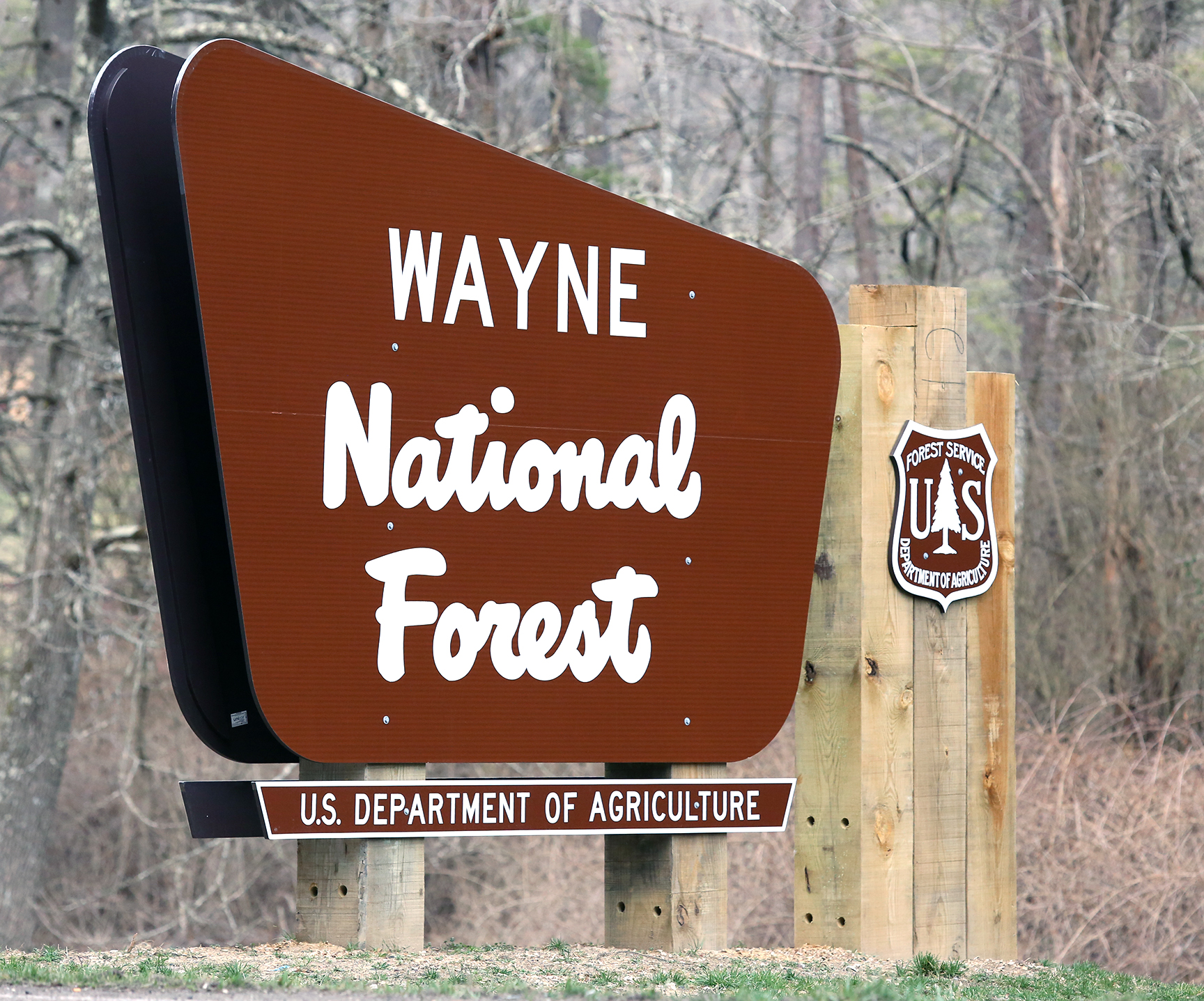 Ring Finger Size Chart: Wayne National Forest - Wikipedia,Chart