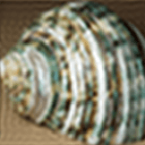 160 by 160 thumbnail of 'Green Sea Shell' - 3. fourier reconstruction from 40 x 40.png