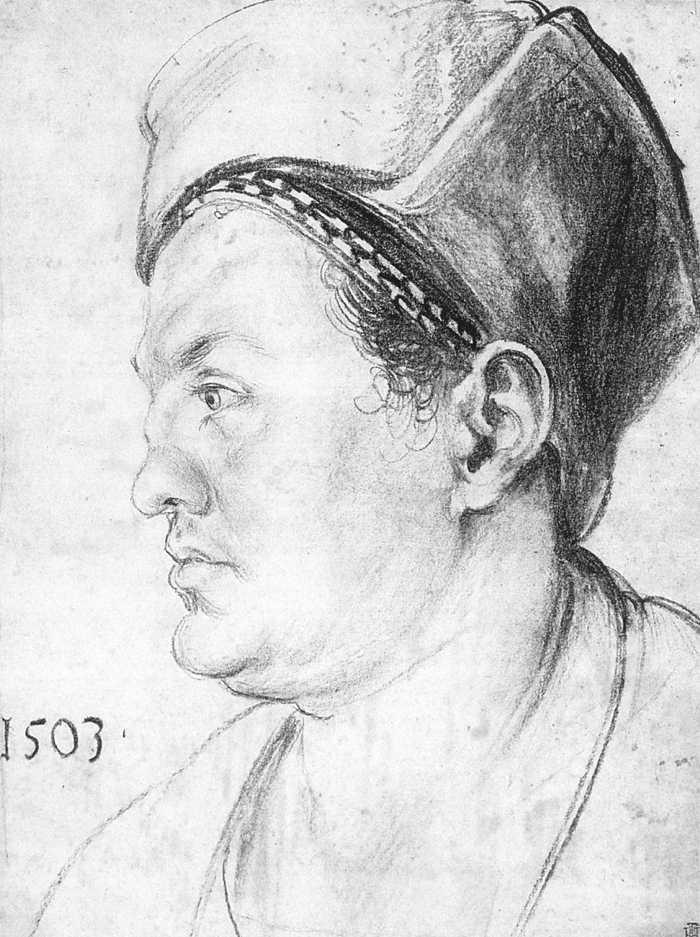 Durer Albrecht Renaissance sex homosexual Pirkheimer sistine dragons