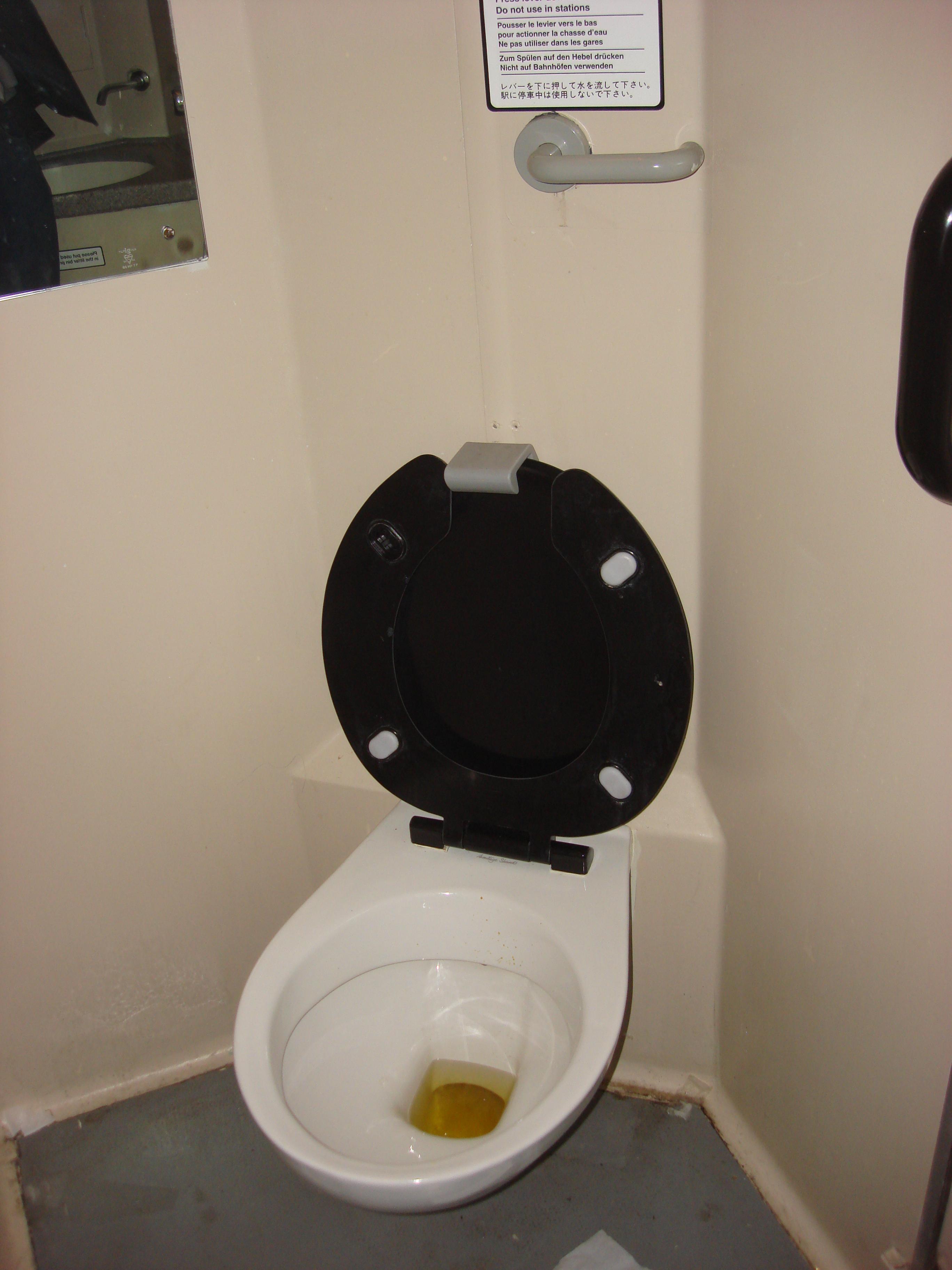 File:British Rail Cl 317 toilet 029.jpg - Wikimedia Commons on