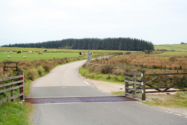 Cattle grid on the road to Colliford Lake - geograph.org.uk - 1544146