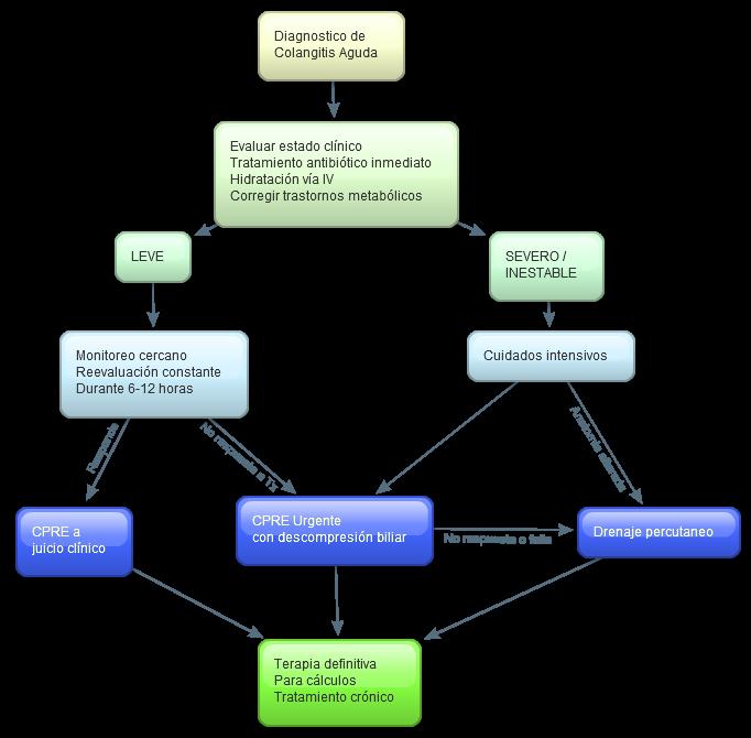Colangitis aguda wikiwand diagrama de flujo para el manejo de la colangitis ccuart Gallery