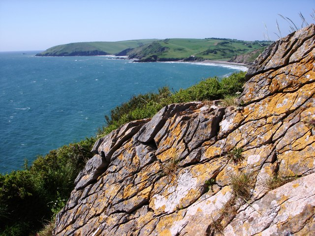 Crazing and cracked stone with lichen at Sharkham Point, Brixham - geograph.org.uk - 806790
