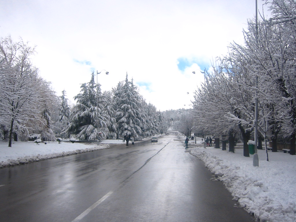 Ifrane Morocco  City pictures : Ifrane Morocco Weather Snowy Ifrane in Morocco
