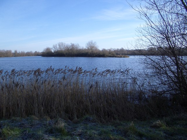 Island in Harrold Odell Country Park - geograph.org.uk - 322078