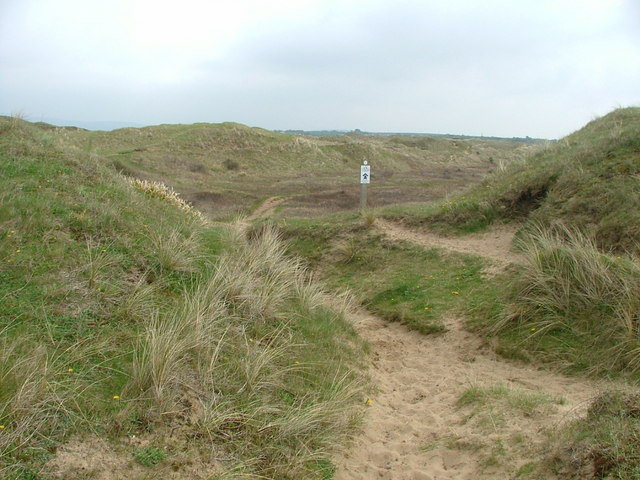 Kenfig Burrows - geograph.org.uk - 161888