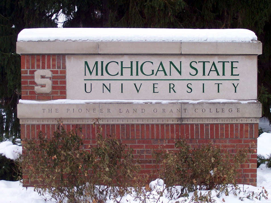 Image result for michigan state university