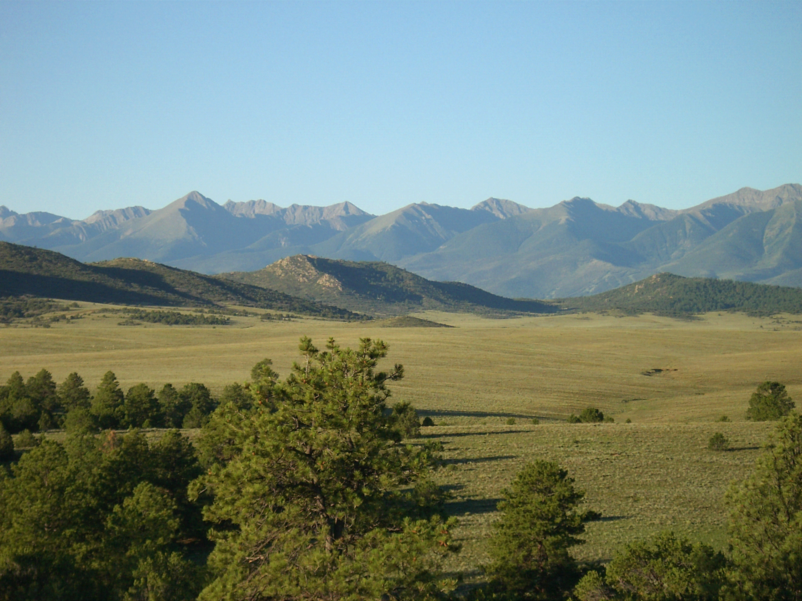 Montane grasslands, Rocky Mountains, Colorado.png