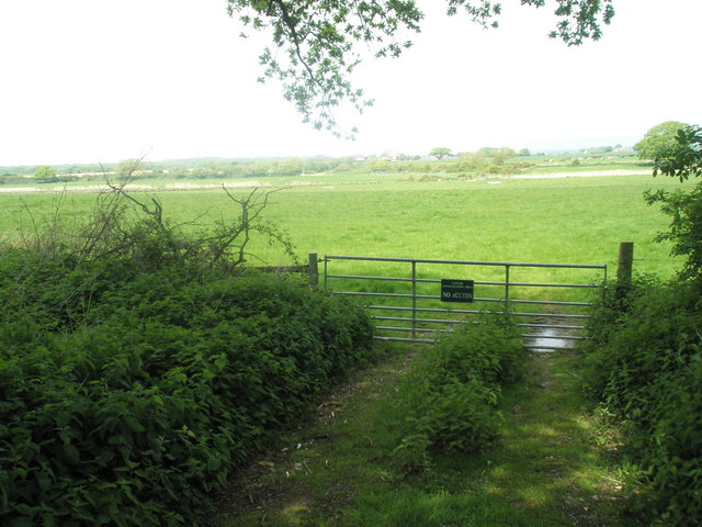 Nature Conservation Area near Chichester Marina - geograph.org.uk - 790909