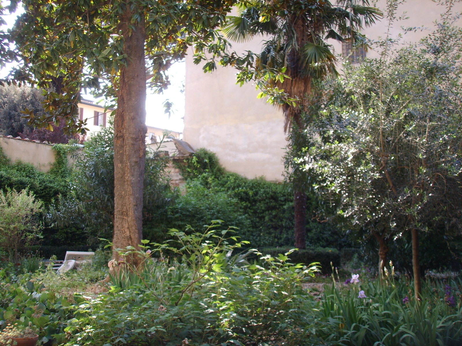 Palazzo_Roffia_giardino_06.JPG