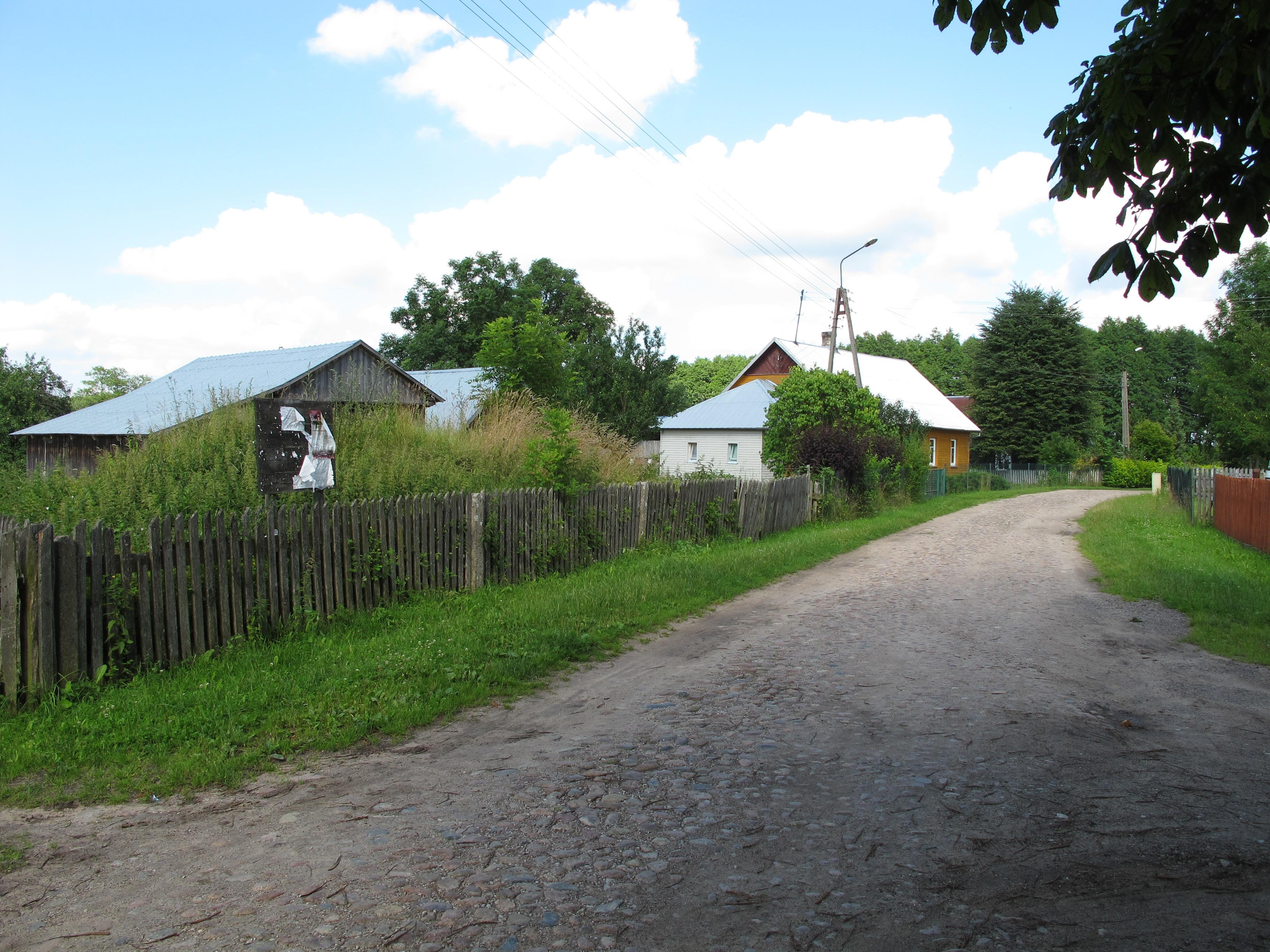 Bžozuvka Korona