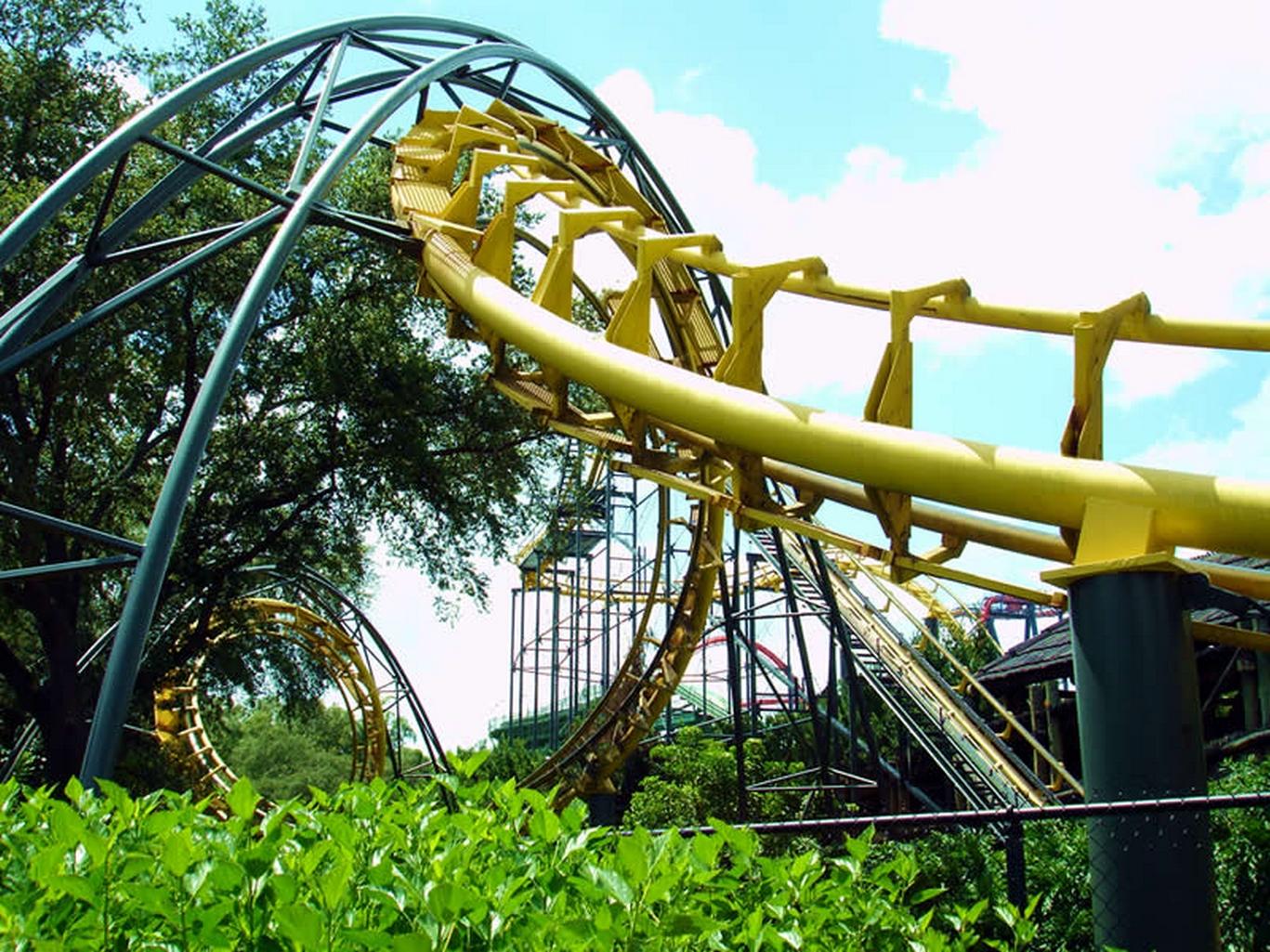 Python Busch Gardens Tampa Bay Wikiwand