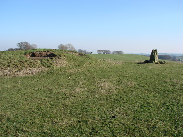 Standing Stone and Tumulus between Shaftoe Crags and Bolam Lake - geograph.org.uk - 948573