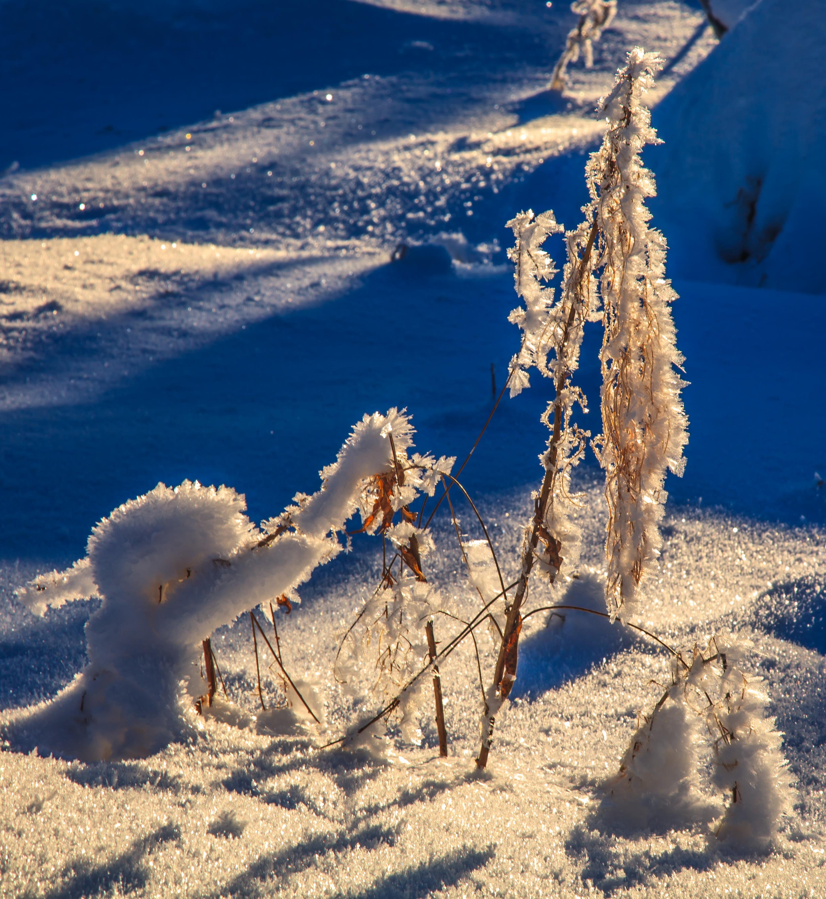 file sun peaks ski resort incredible snow crystals. Black Bedroom Furniture Sets. Home Design Ideas