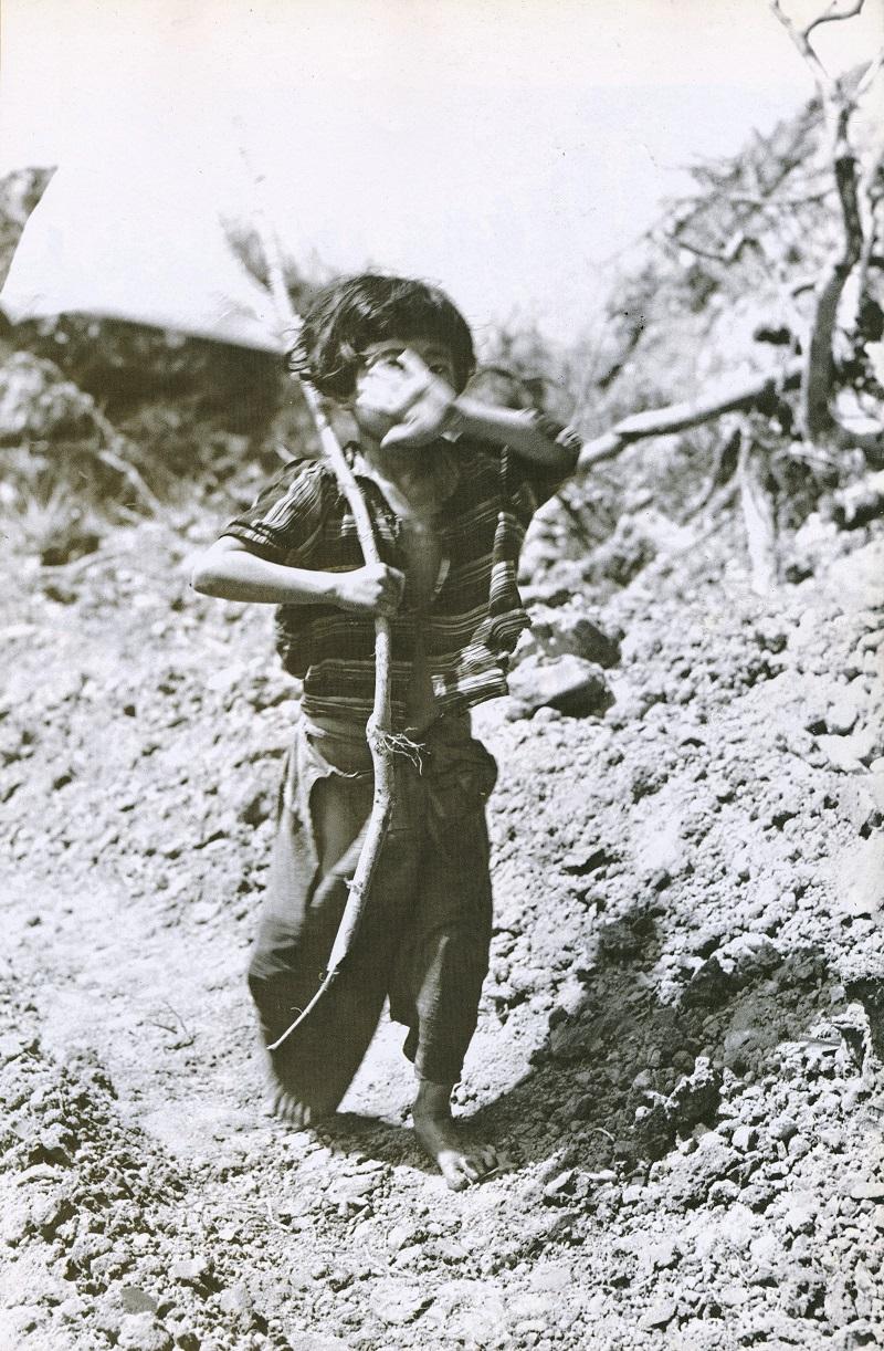 「白旗の少女」の画像検索結果
