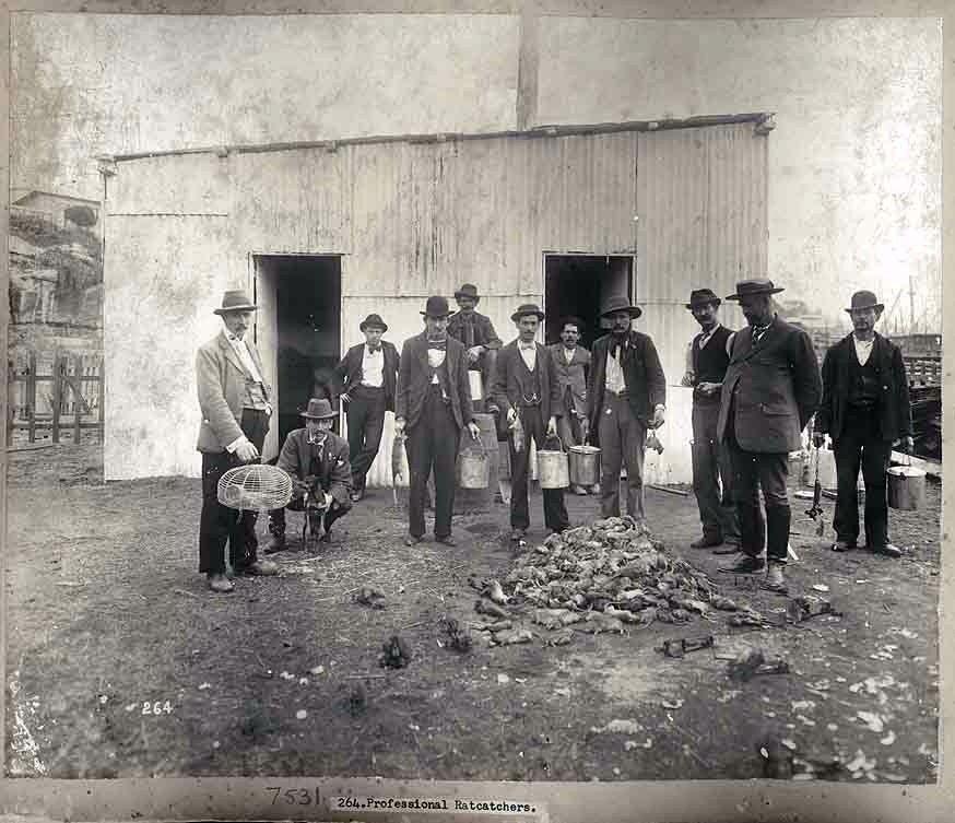 File The Rat Catchers 1900 Jpg Wikimedia Commons
