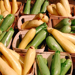 Summer Squash by USDA